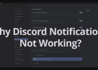 Why-Discord-Notifications-Not-Working