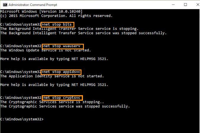 Restart the Windows Update Service