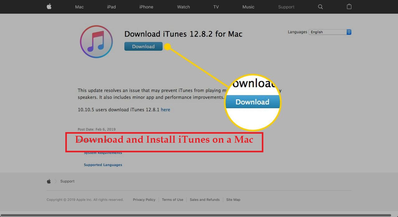Download and Install iTunes on a Mac