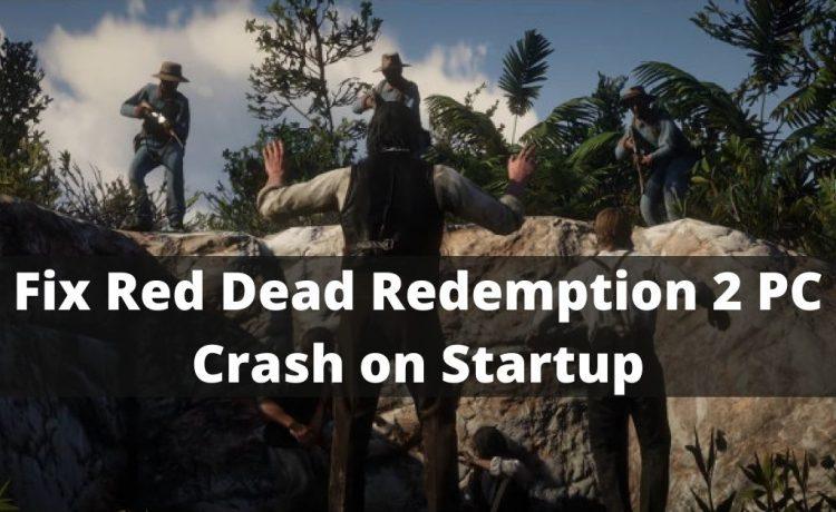 Red Dead Redemption 2 PC Crash on Startup